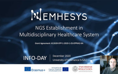 The Nemhesys Project